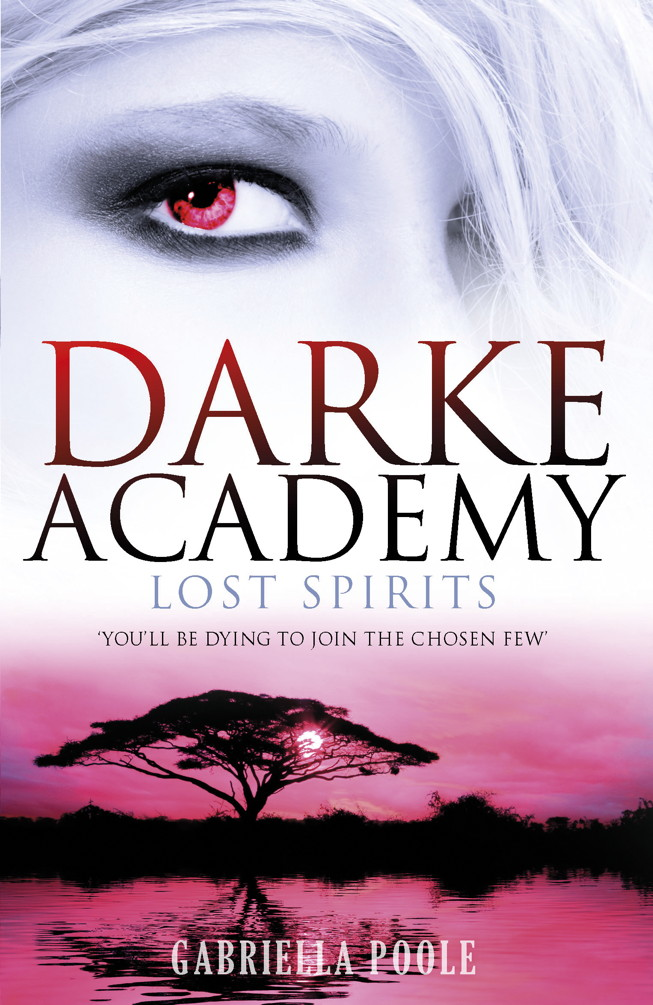 Darke Academy 4: Lost Spirits
