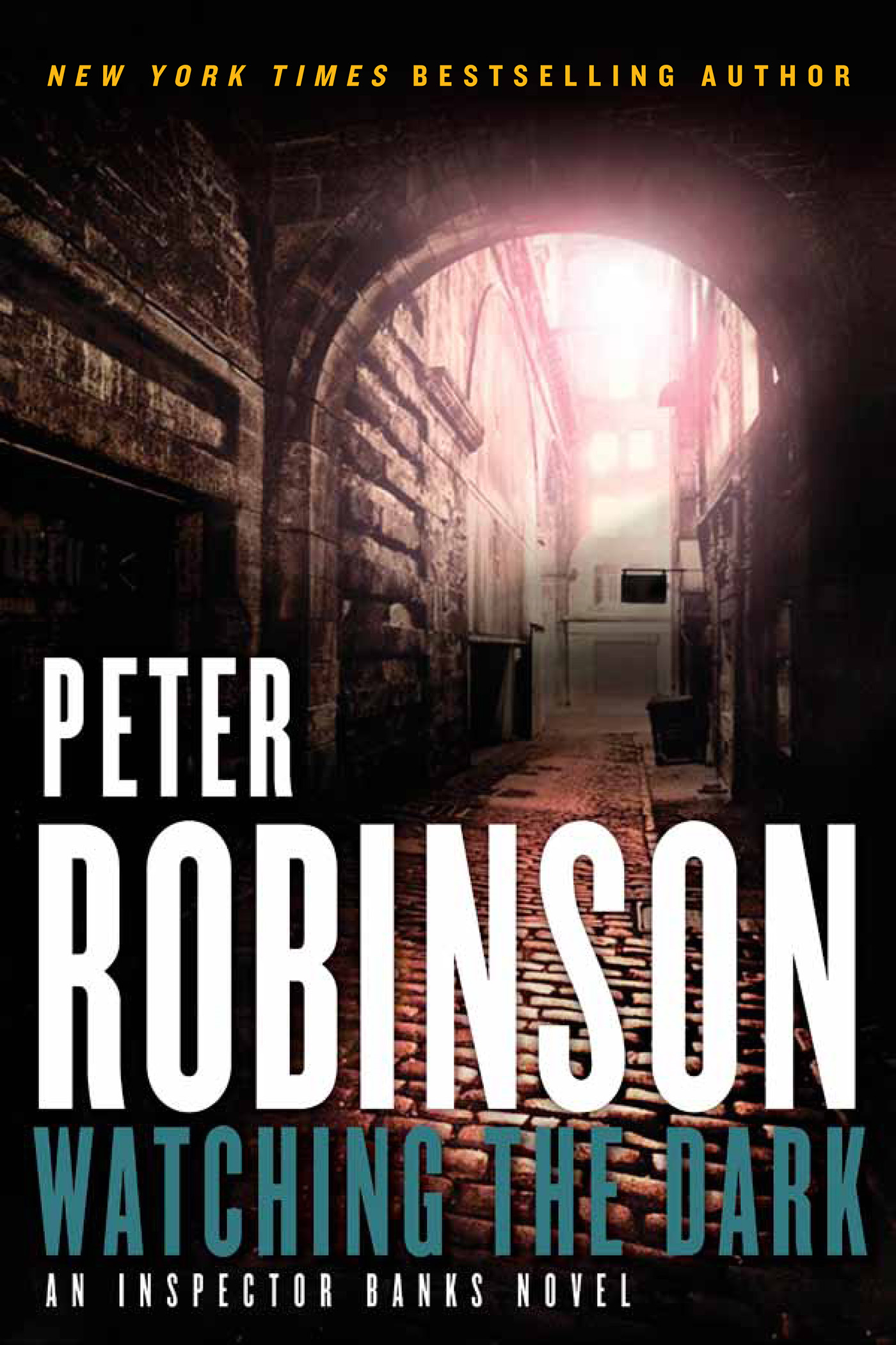Watching the Dark By: Peter Robinson