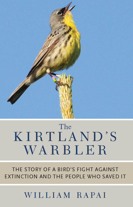 The Kirtland's Warbler By: William Rapai