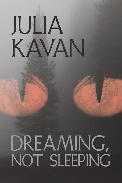 Dreaming, Not Sleeping  By: Julia Kavan