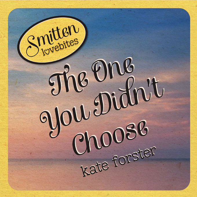 Smitten Lovebites: The One You Didn't Choose