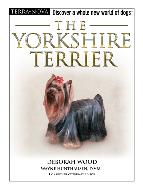 The Yorkshire Terrier By: Deborah Wood