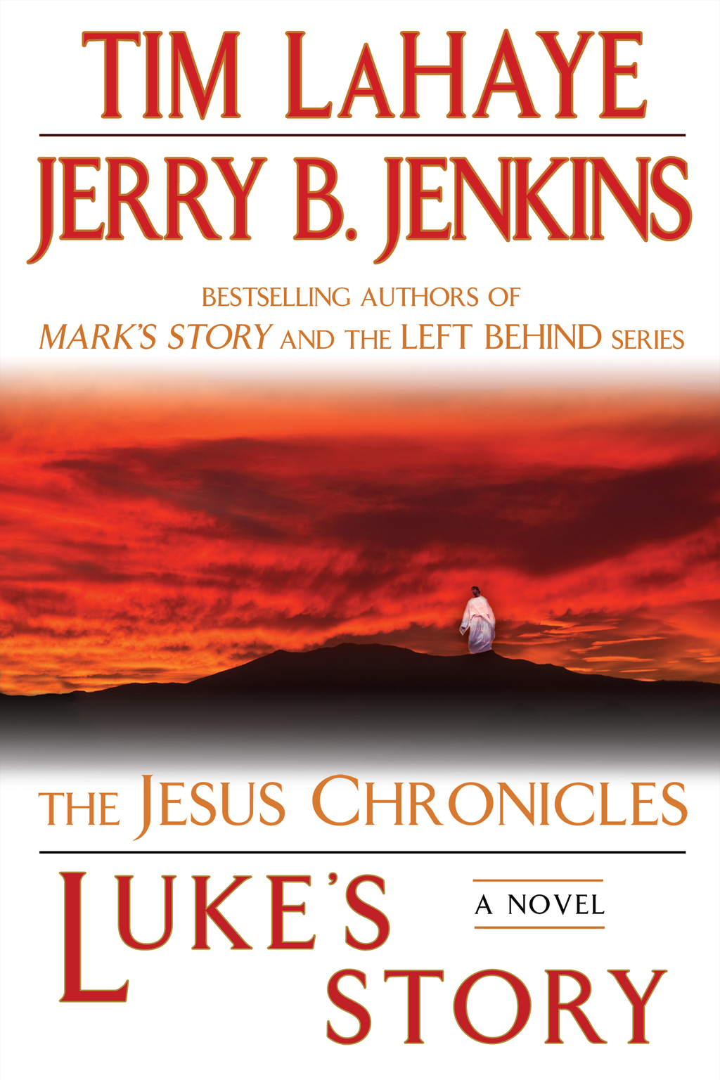 Luke's Story By: Jerry B. Jenkins,Tim LaHaye