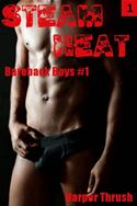 download Steam Heat (Bareback Boys #1) book