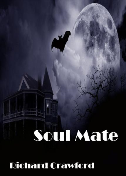 Soul Mate (Book One)