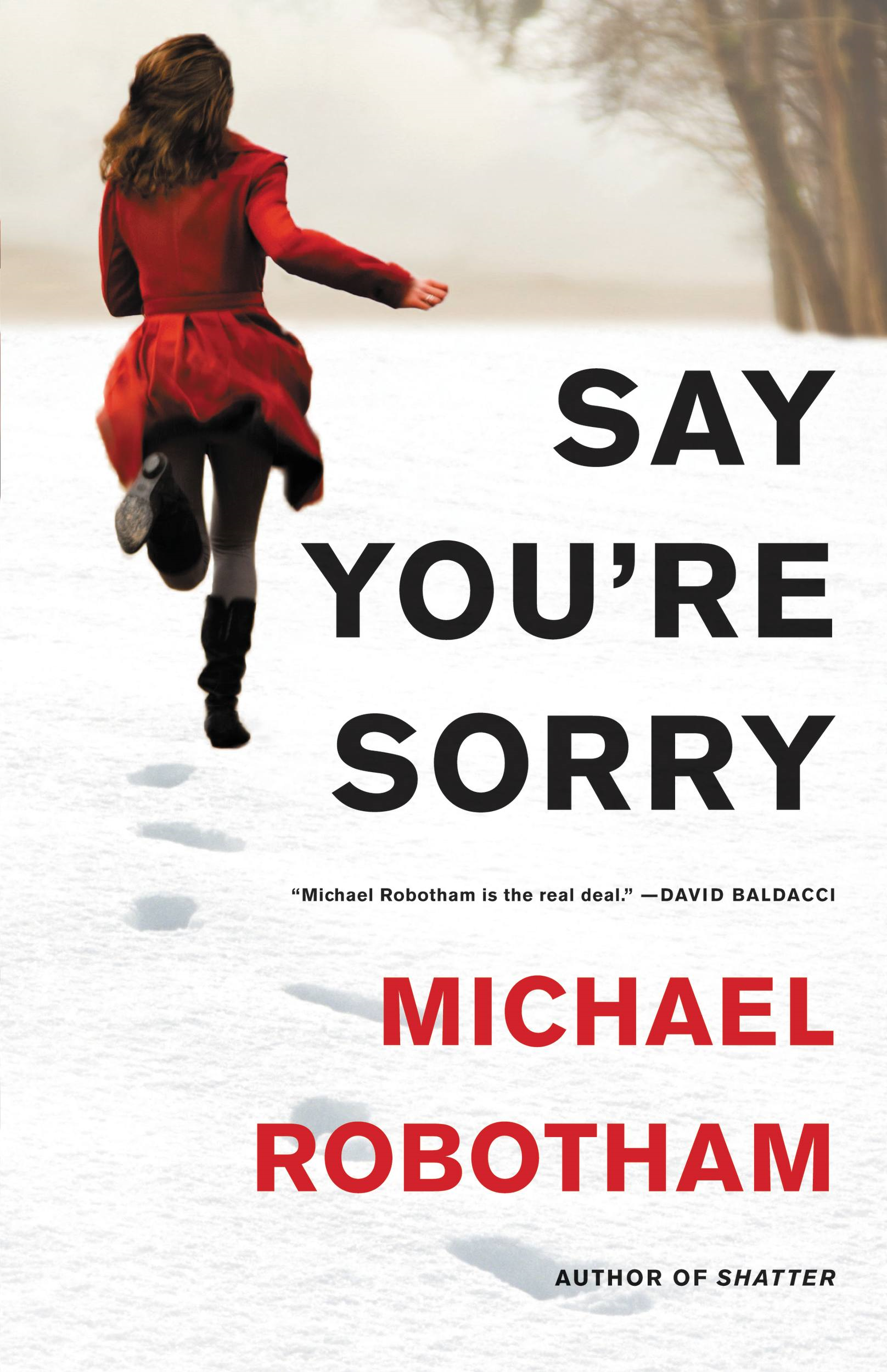 Say You're Sorry By: Michael Robotham
