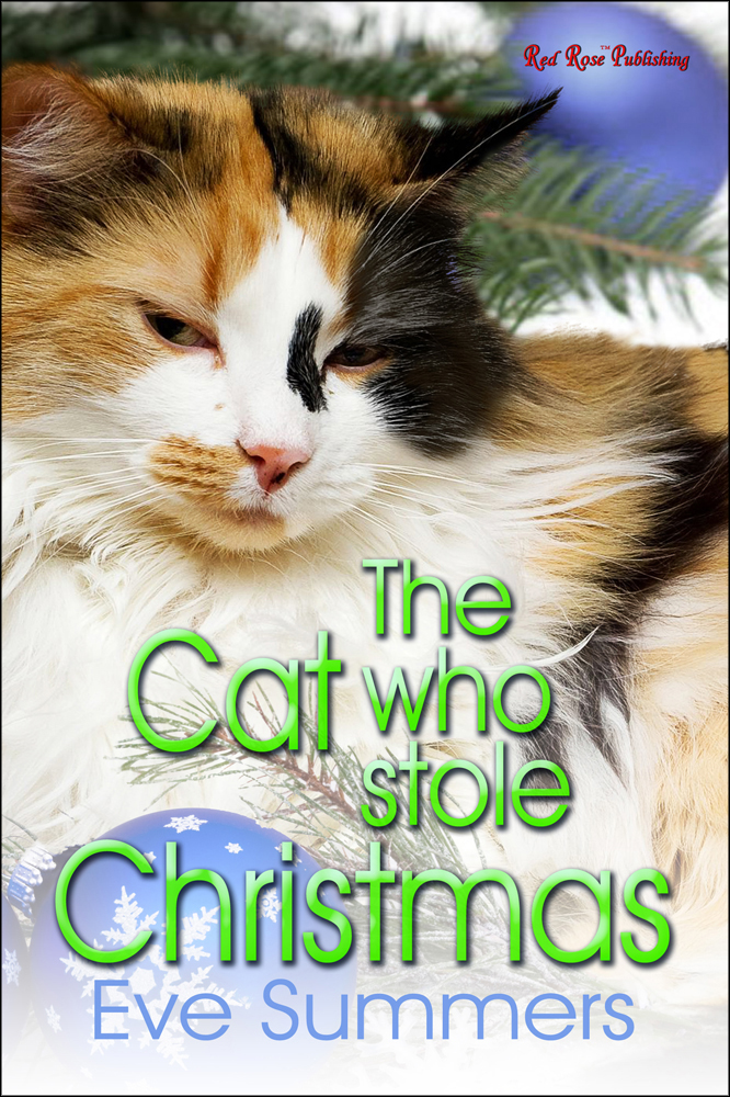 The Cat Who Stole Christmas