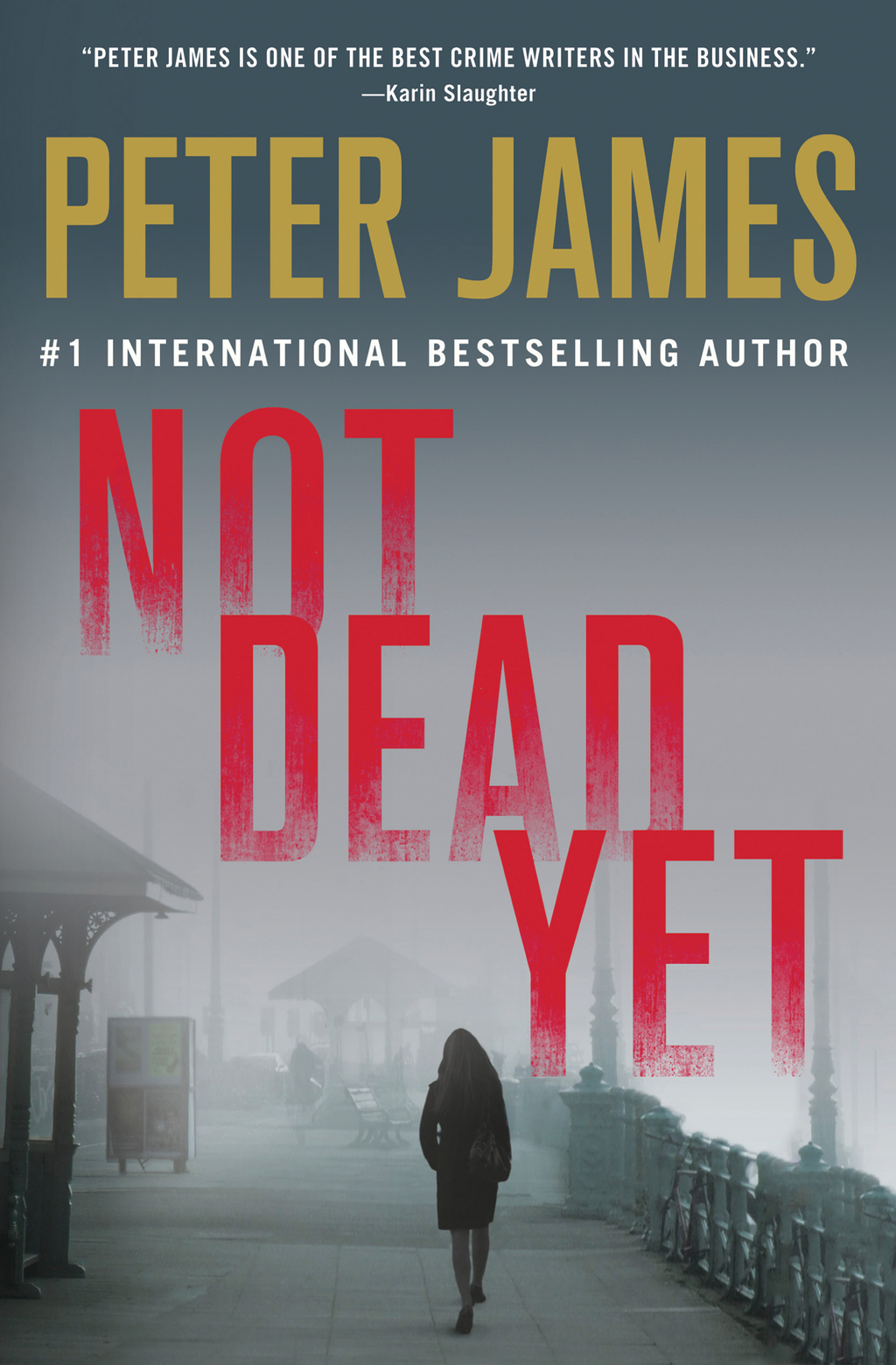 Not Dead Yet By: Peter James