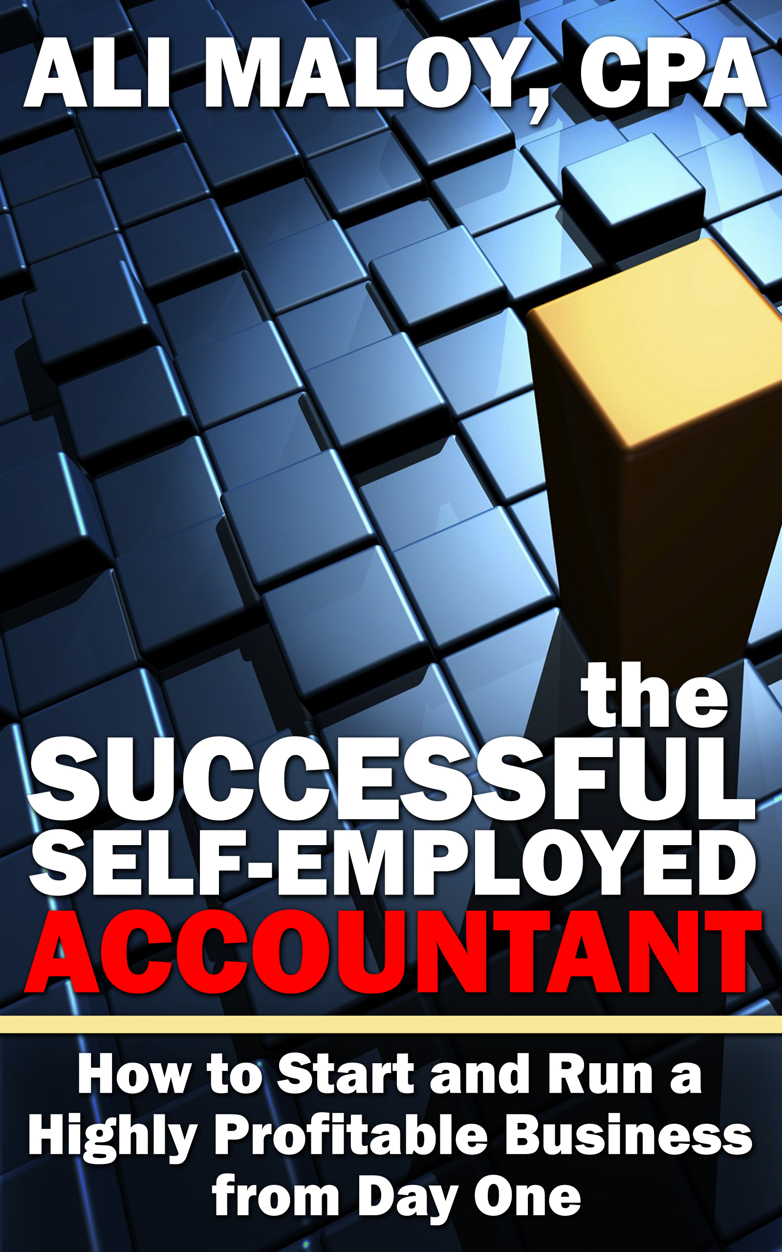 The Successful Self-Employed Accountant: How to Start and Run a Highly Profitable Business from Day One
