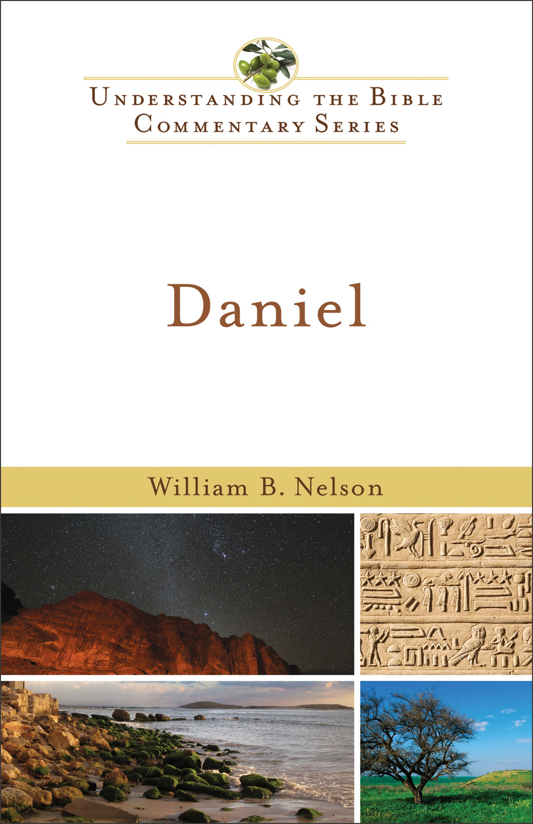 Daniel (Understanding the Bible Commentary Series)
