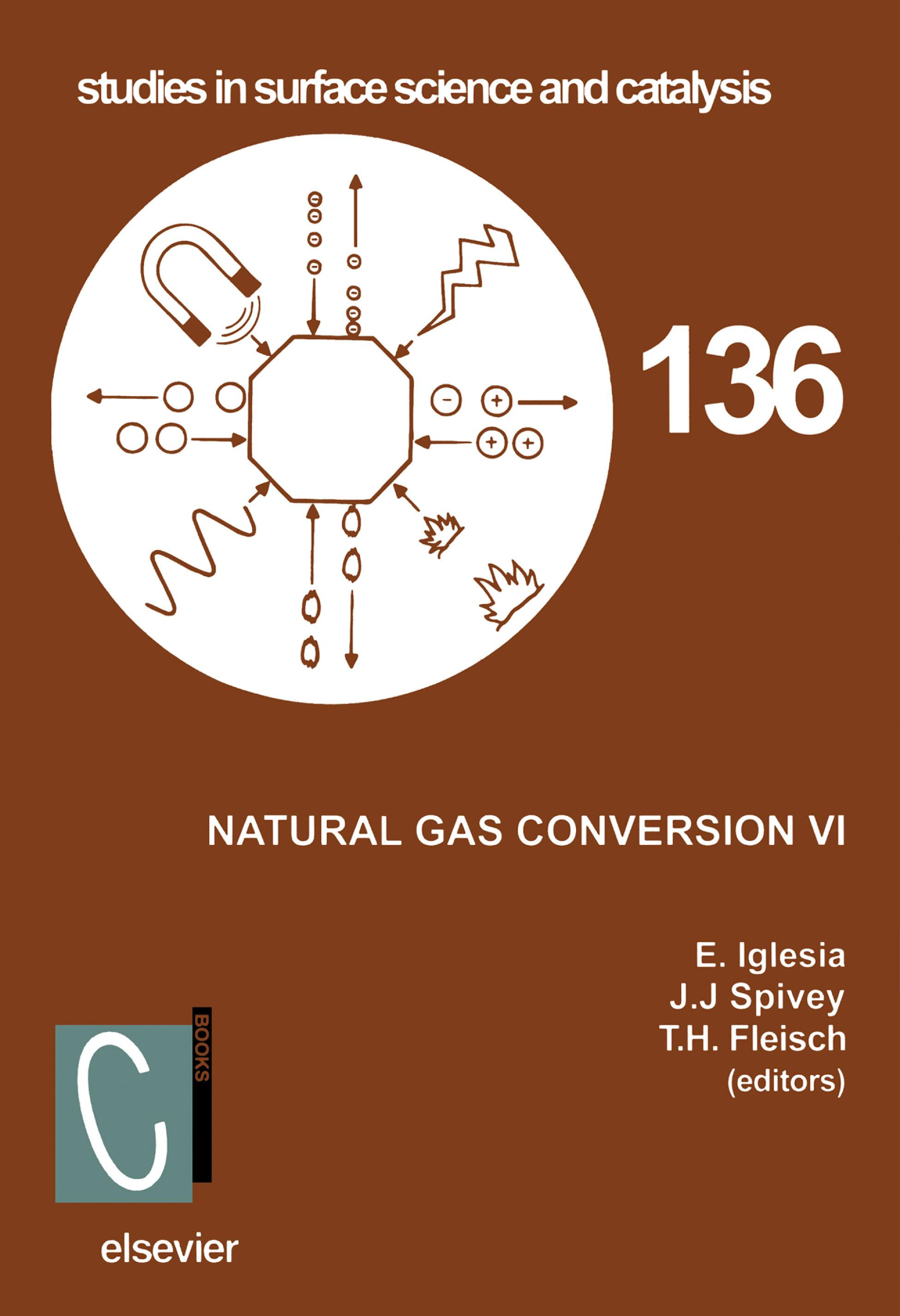 Natural Gas Conversion VI By: Fleisch, T.H.