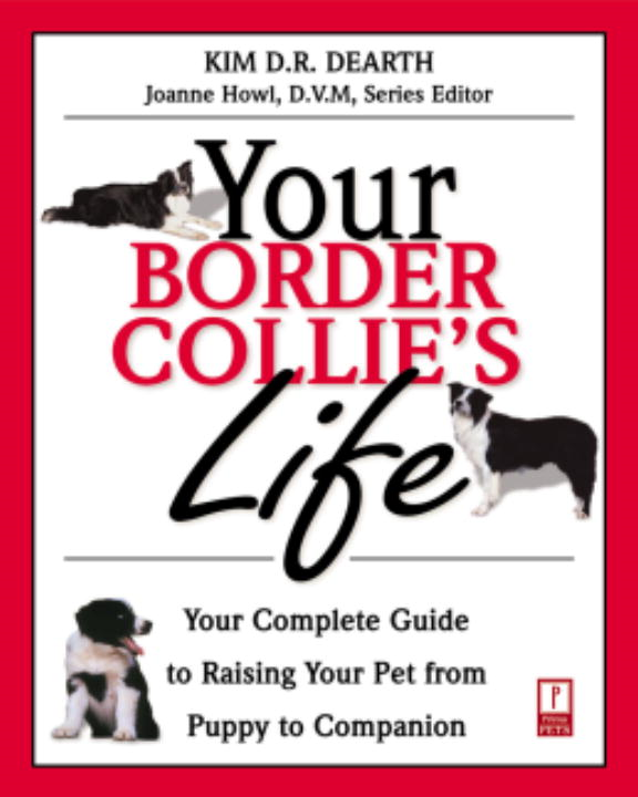 Your Border Collie's Life