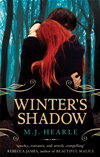 Winter's Shadow: A Winter Adams Novel 1: