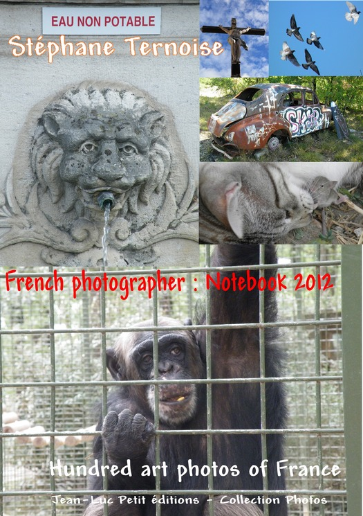 French photographer: Notebook 2012