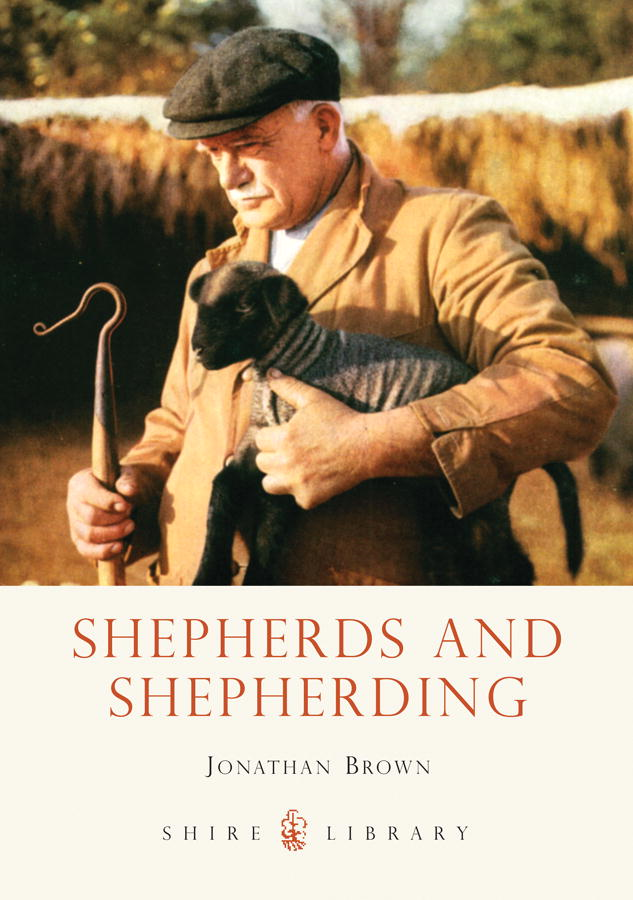 Shepherds and Shepherding By: JONATHAN BROWN