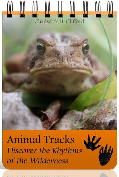 Animal Tracks: Discover the Rhythms of the Wilderness By: Chad Clifford