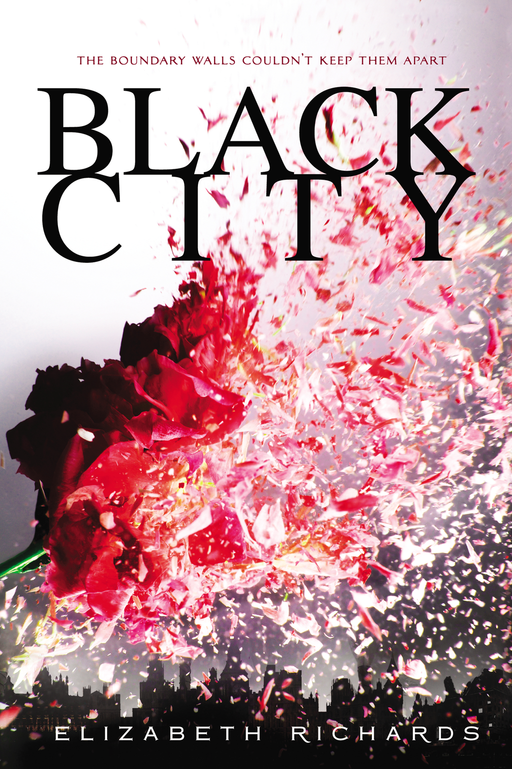 Black City By: Elizabeth Richards