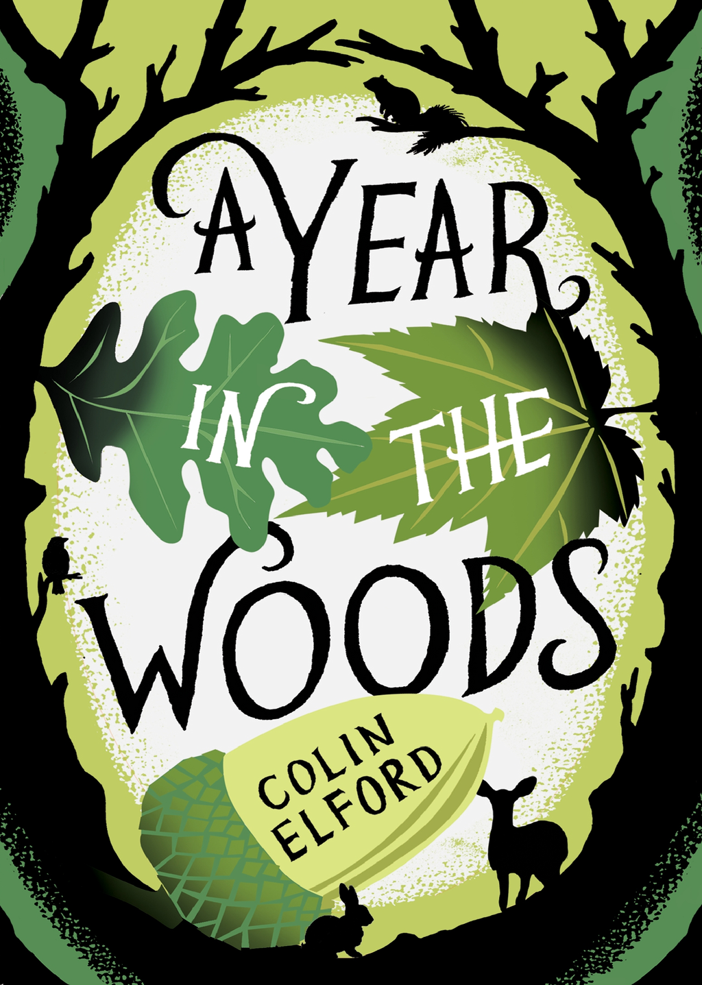 A Year in the Woods By: Colin Elford