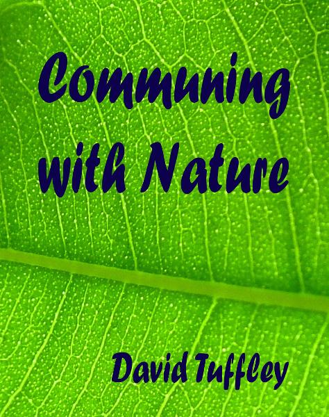 Communing with Nature By: David Tuffley