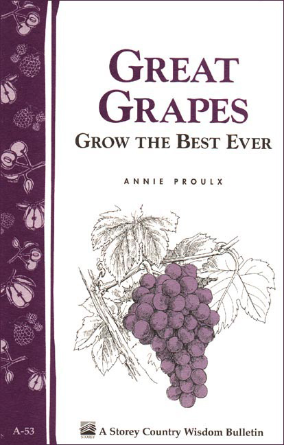 Great Grapes By: Annie Proulx