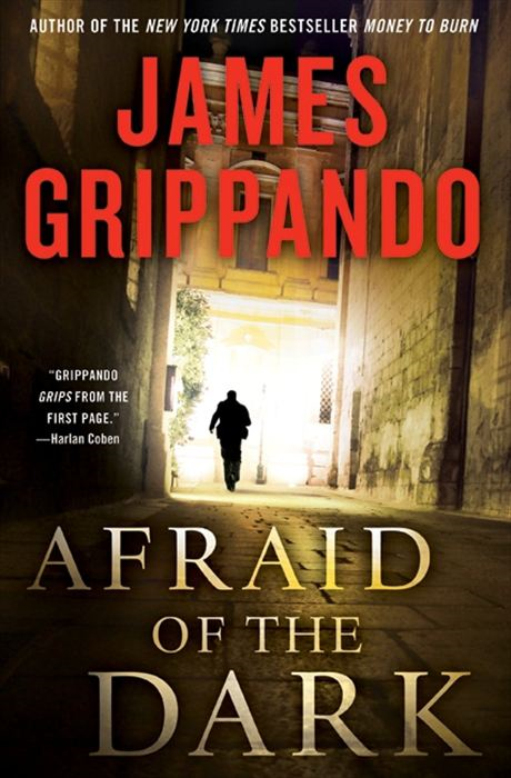 Afraid of the Dark By: James Grippando