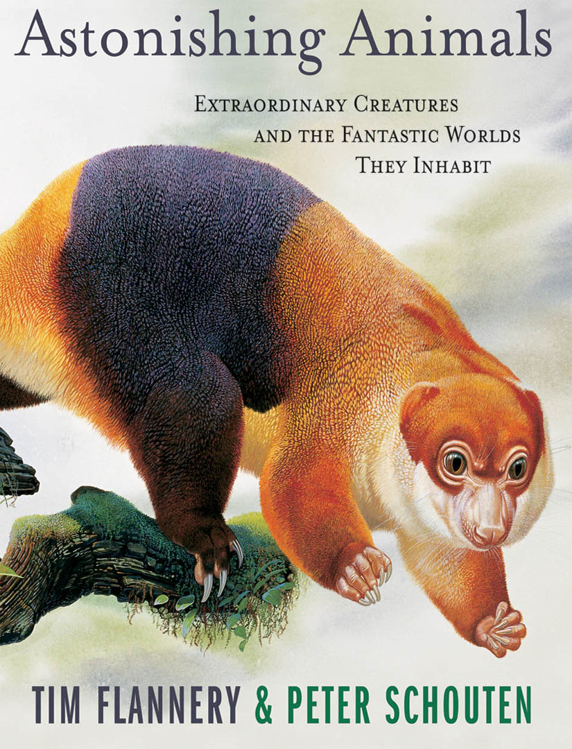 Astonishing Animals By: Tim Flannery,Peter Schouten