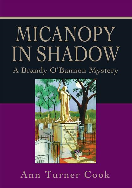 Micanopy in Shadow By: Ann Cook