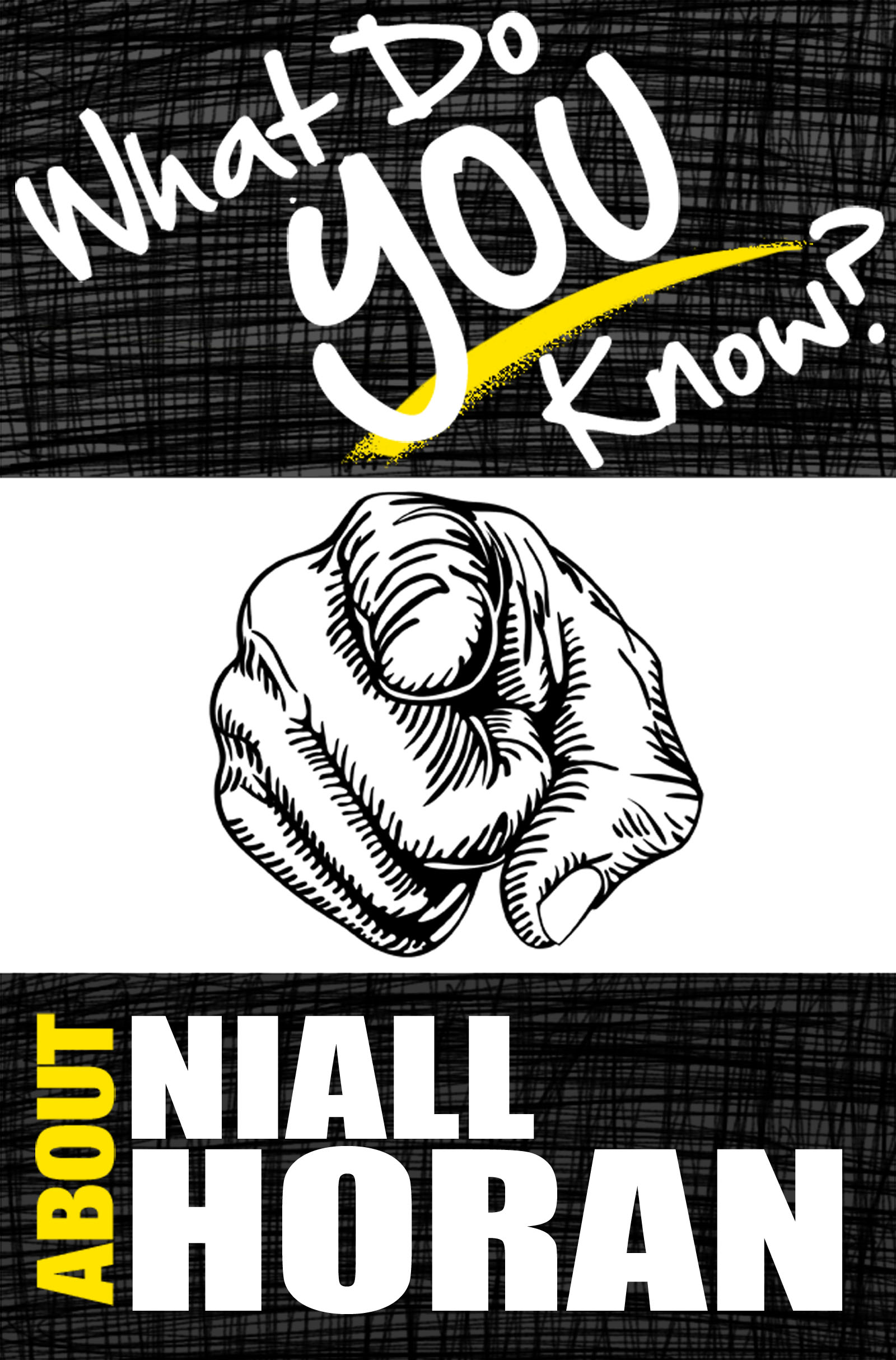 What Do You Know About Niall Horan?