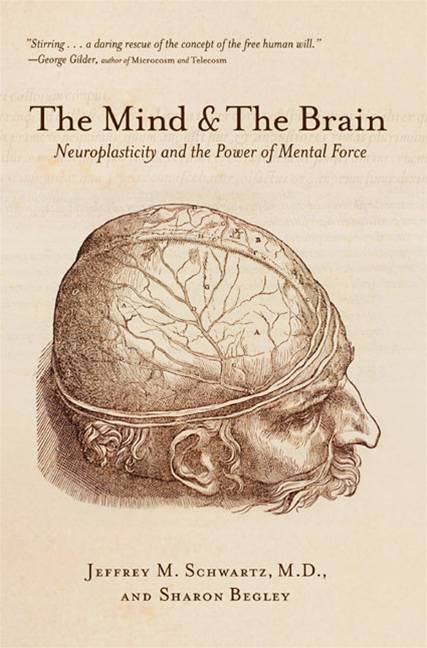 The Mind and the Brain By: Jeffrey M. Schwartz,Sharon Begley