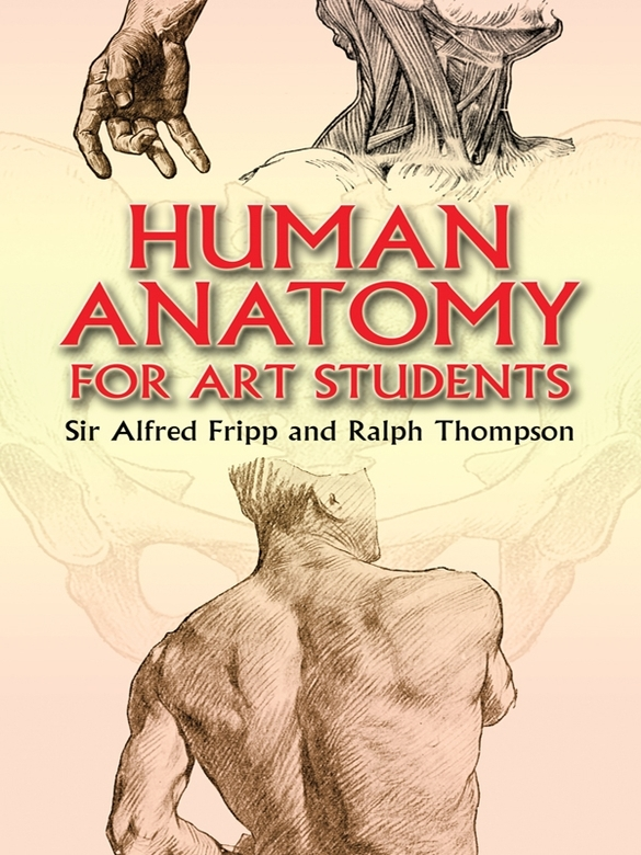Human Anatomy for Art Students By: Francis Davis,Ralph Thompson