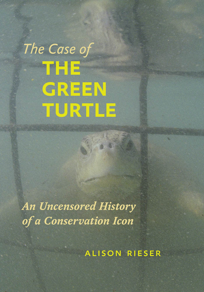 The Case of the Green Turtle