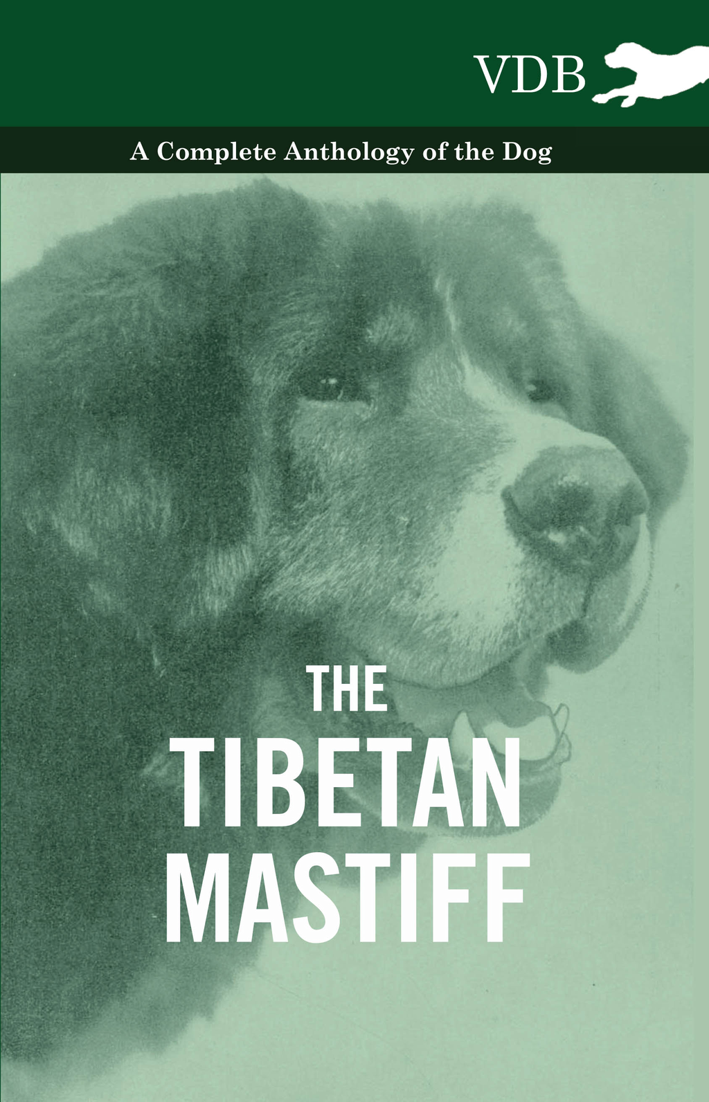 The Tibetan Mastiff - A Complete Anthology of the Dog