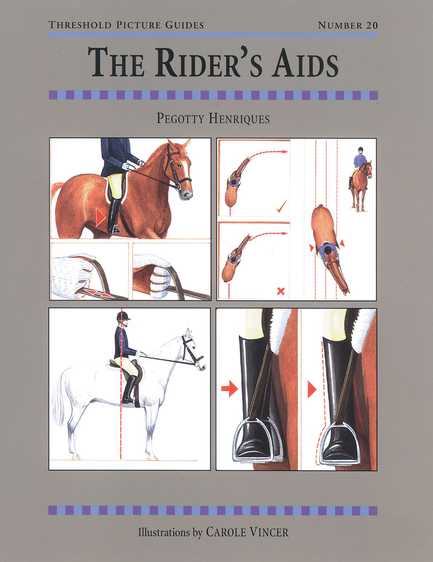 The RIDER'S AIDS By: PEGOTTY HENRIQUES,CAROLE VINCER