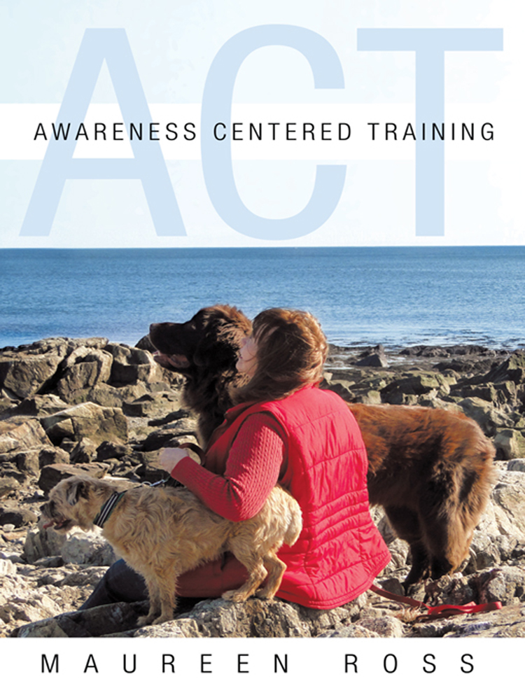 Awareness Centered Training - ACT By: Maureen Ross