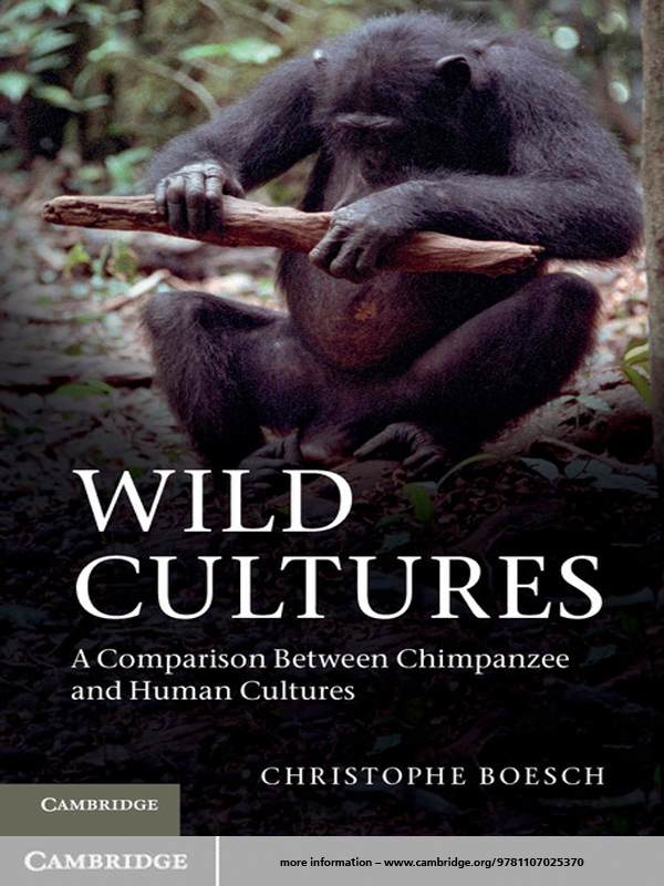 Wild Cultures A Comparison between Chimpanzee and Human Cultures
