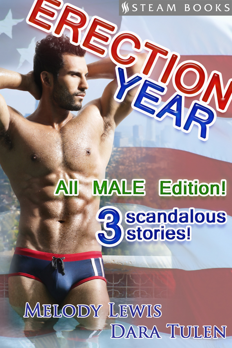 Erection Year All MALE Edition - A Sexy Compilation of 3 M/M Gay Erotic American Election-Themed Stories Featuring the President and Secret Service