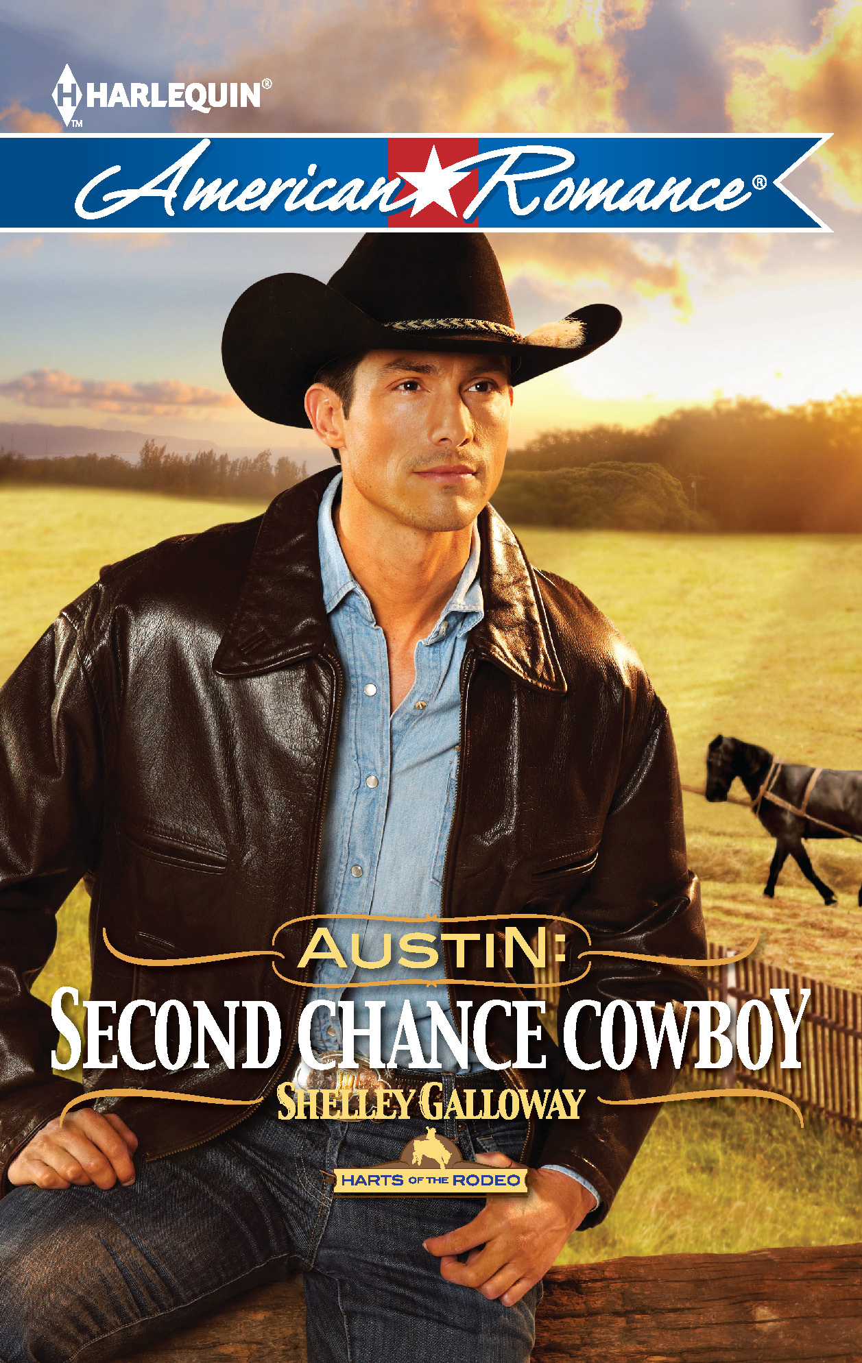 Austin: Second Chance Cowboy By: Shelley Galloway