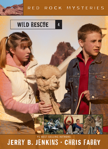 Wild Rescue By: Chris Fabry,Jerry B. Jenkins