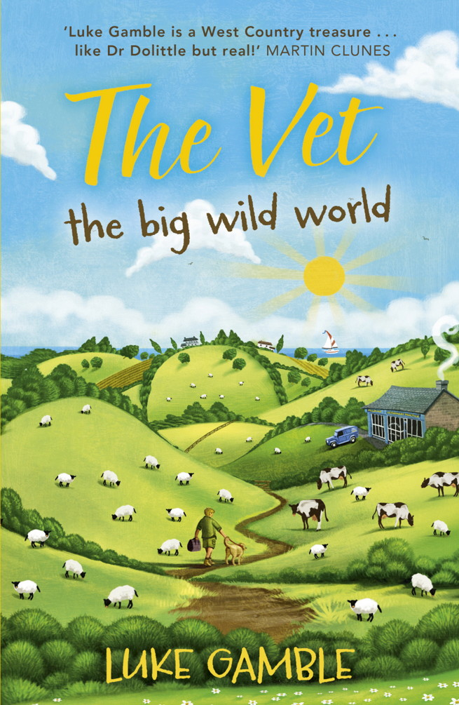 The Vet: the big wild world By: Luke Gamble