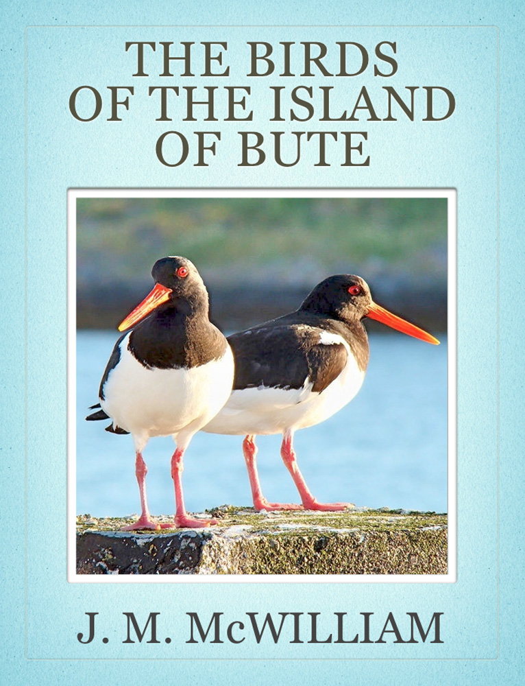 The Birds of the Island of Bute By: J. M. McWilliam