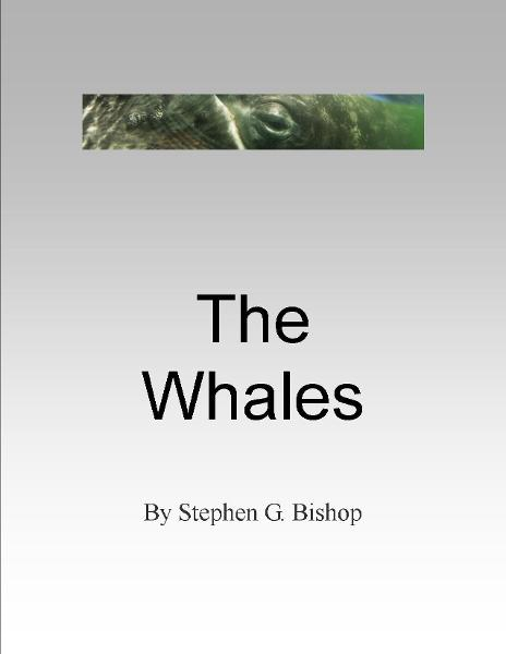 The Whales By: Stephen Bishop
