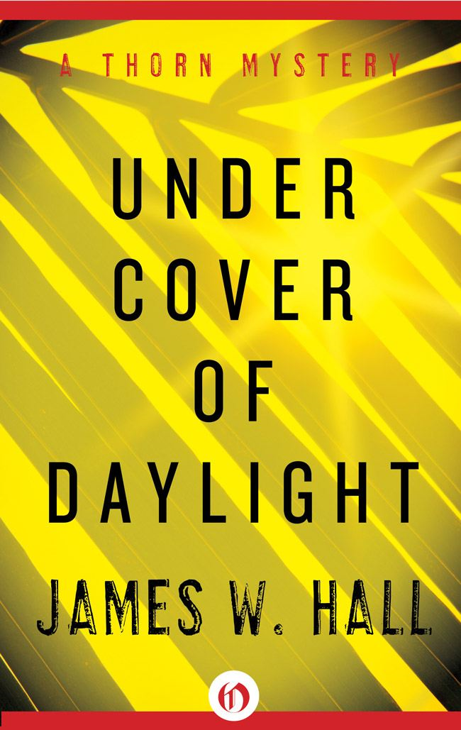 Under Cover of Daylight By: James W. Hall