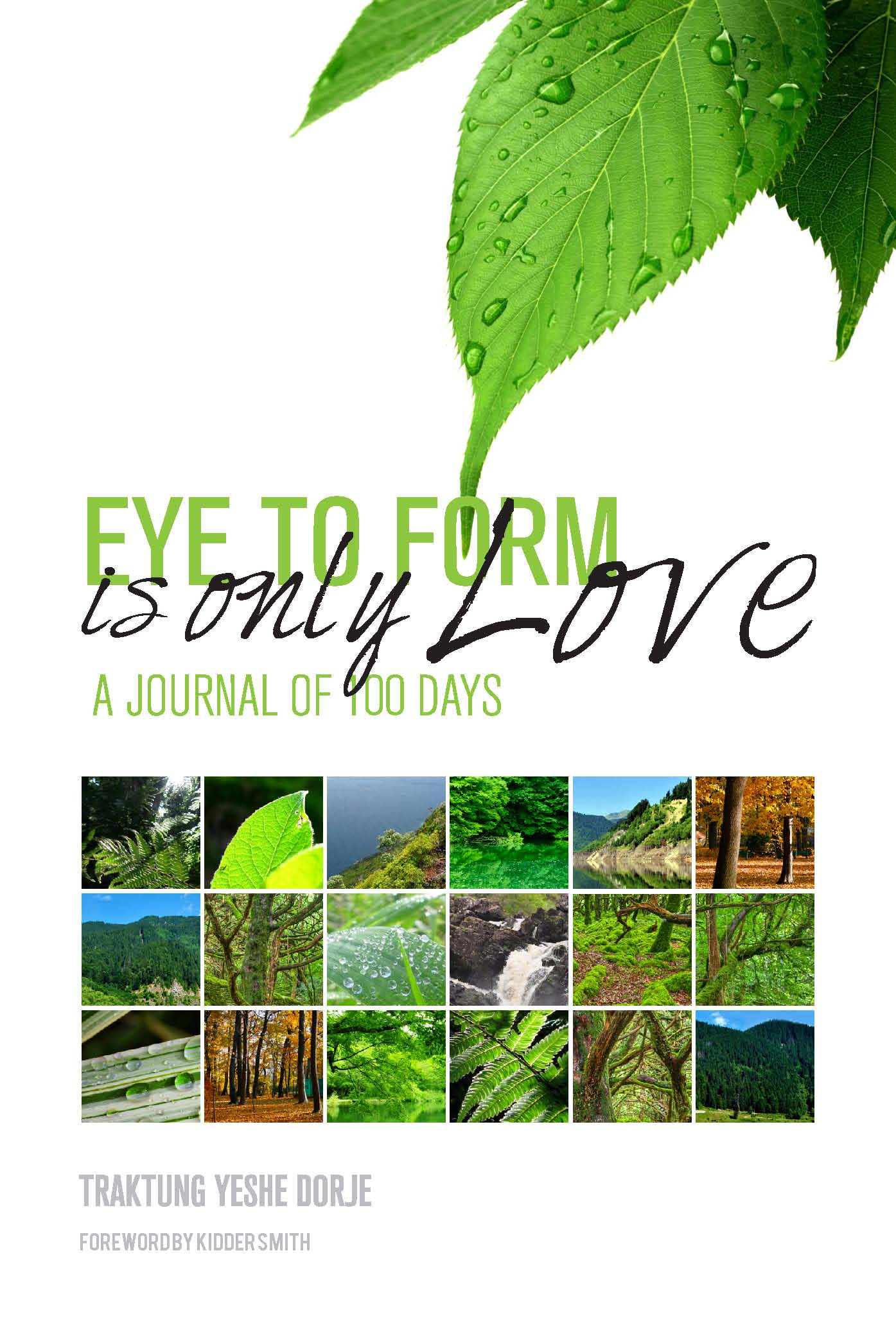 Eye To Form Is Only Love: A Journal of 100 Days