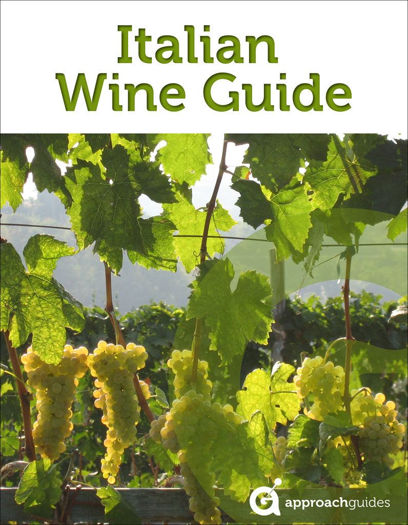 Italian Wine Guide (Guide to the Wines of Italy) By: Approach Guides,David Raezer,Jennifer Raezer
