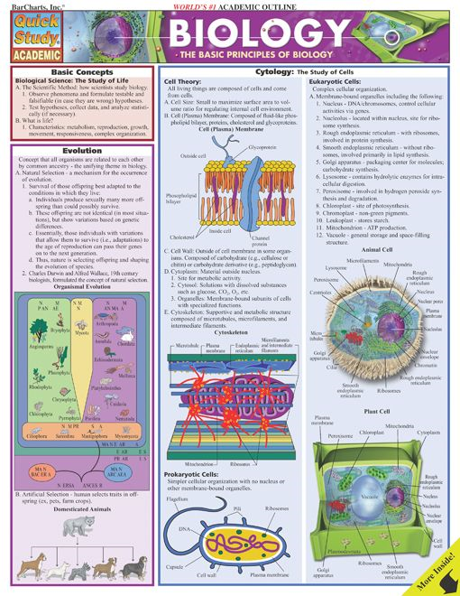 Biology By: BarCharts,Inc