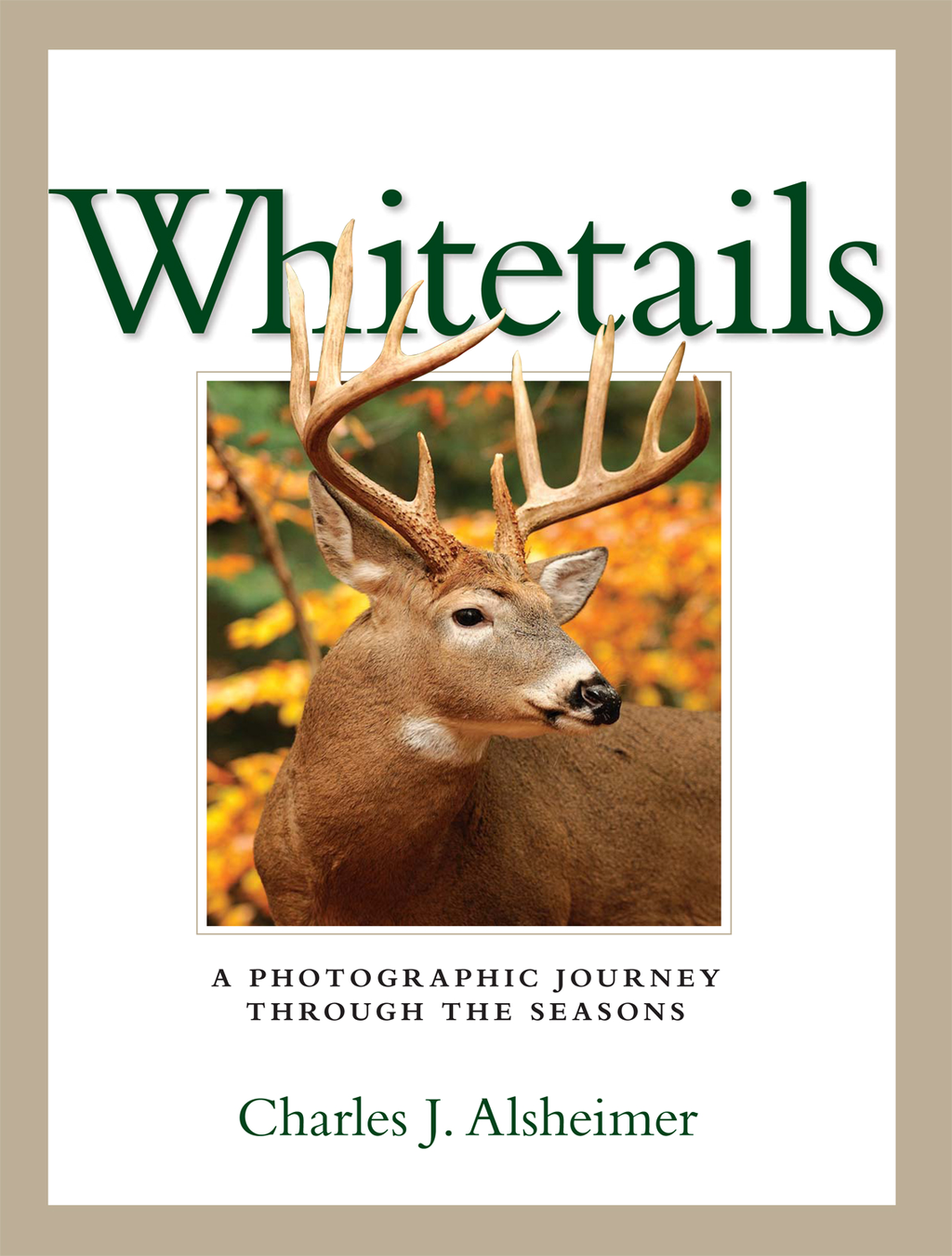 Whitetails A Photographic Journey Through the Seasons
