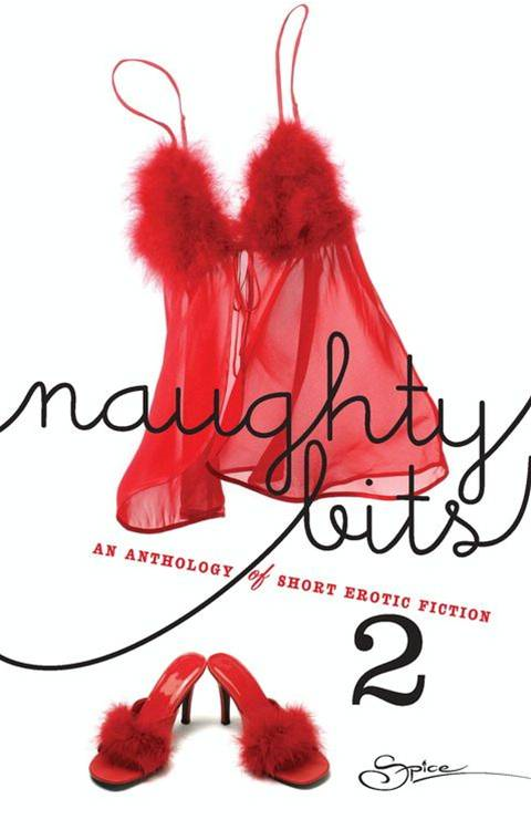 Naughty Bits 2 (Mills & Boon Spice)