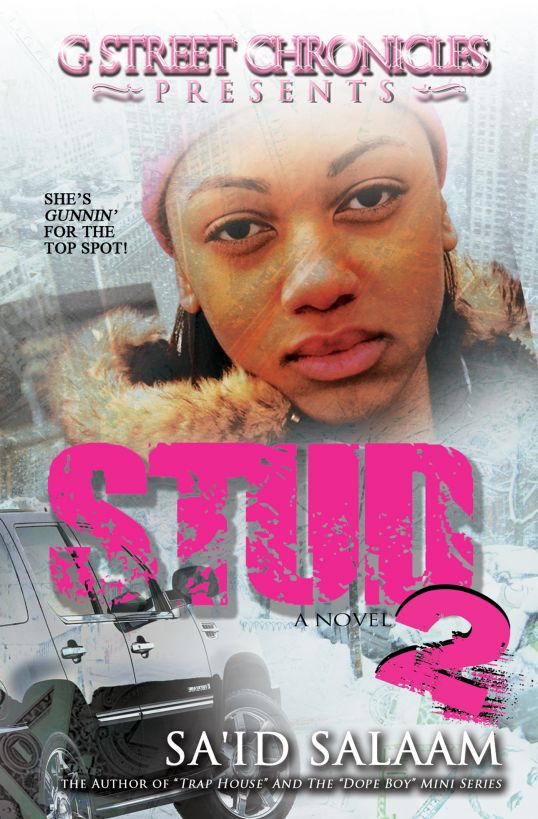 Stud 2 (G Street Chronicles Presents) By: Sa'id Salaam