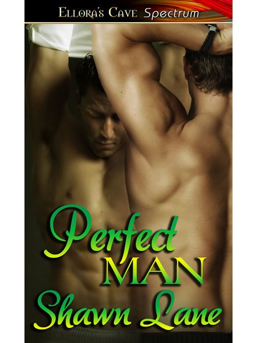 Perfect Man By: Shawn Lane