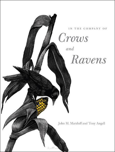 In the Company of Crows and Ravens By: John M. Marzluff,Paul R. Ehrlich,Tony Angell